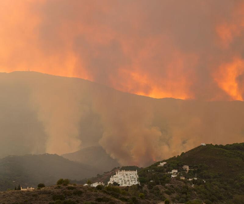 Vistas del incendio en Sierra bermeja de Estepona